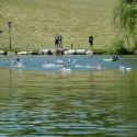 Aquathlon_Saalfelden_55